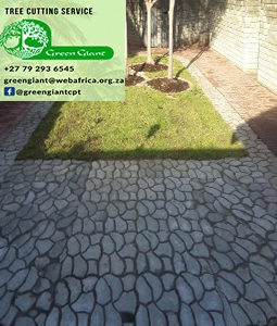 paving patio diy cobble stone mould